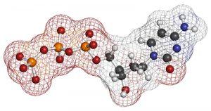 proteine-300×158